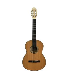 گیتار کلاسیک بست فان مدل 160